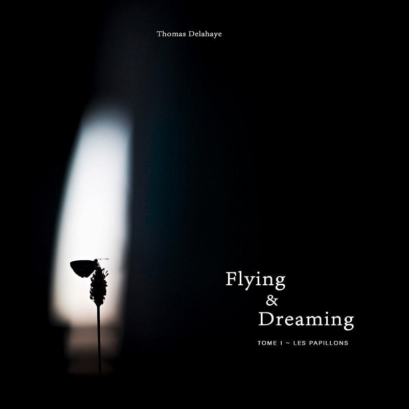 Flying-dreaming-thomas-delahaye