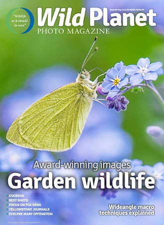 10 - Mai 2015 - Wild Planet photo Magazine , page 31, photography of the Month