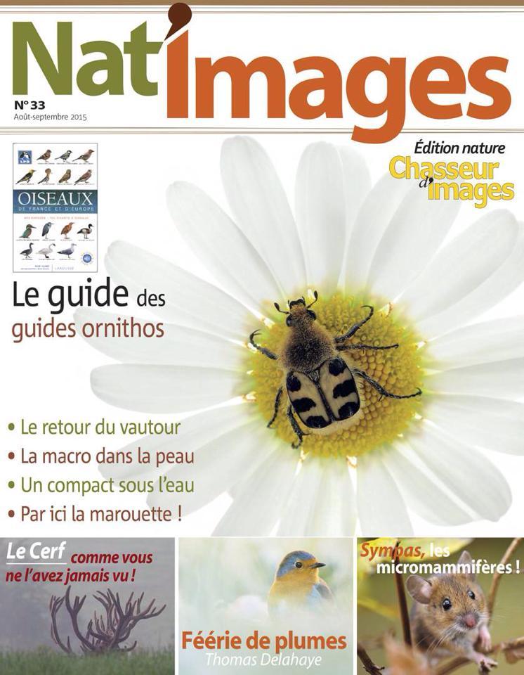 13 - Aout -Septembre 2015, Nat image 33, Interview portfolio oiseaux 8 pages